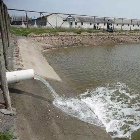 海南上万亩鱼虾塘将被清零!环保重压之下,虾塘如何选址?