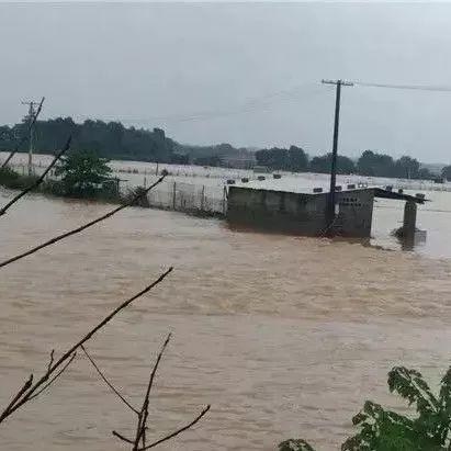 今年极端天气或多发,这些产区可能发生暴雨洪水!水产人面临严峻考验!