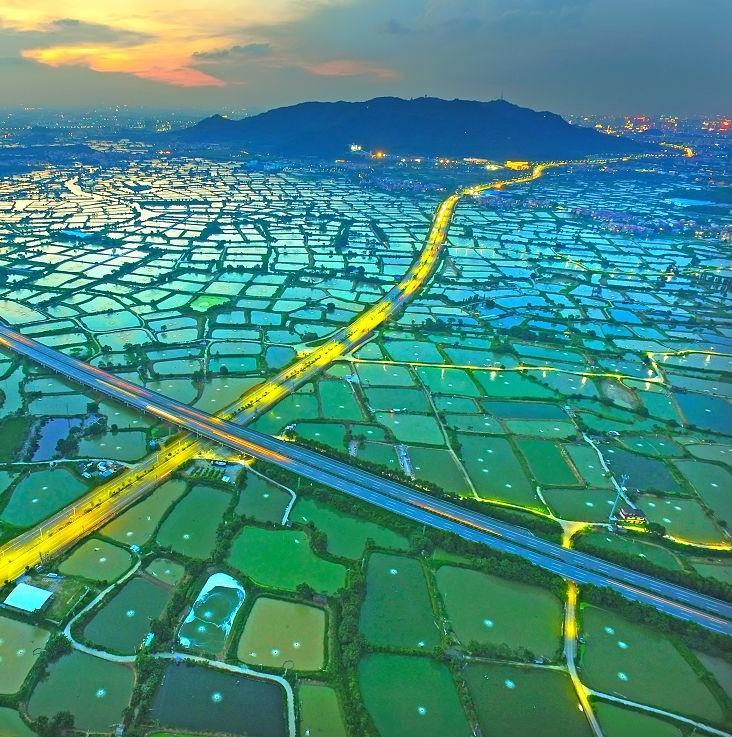 """佛山这10000多亩鱼塘被誉为""""世间少有美景"""",即将申遗!"""