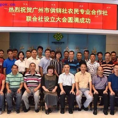 广州成立首家市级农民专业合作社联合社