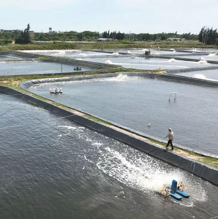 年入百万引发水产养殖投资潮!第一步你得先了解如何拿地