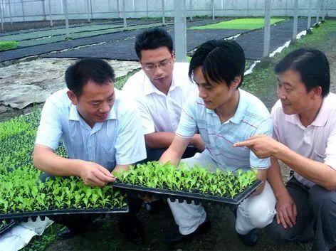 一大波扶持正在靠近!广东省征集农业应用技术研发与成果转化项目