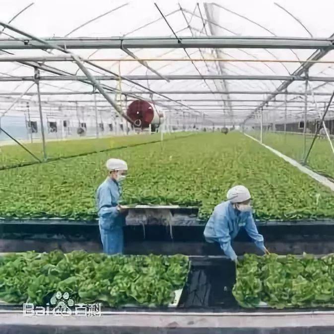 《农民专业合作社法》7月1日实施,看清修订前后对照