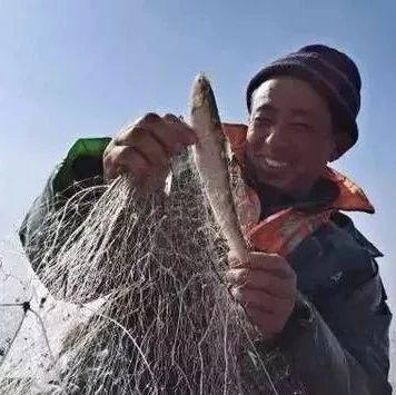 这鱼卖4500-5000元/斤!它是中国最顶级的鱼,吃过的都是土豪!