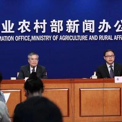 农业农村部:上半年我国农产品市场供给总体充裕价格偏弱