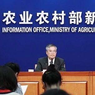 农业农村部权威发布!玉米、稻谷、大豆、蔬菜未来价格走势如何?