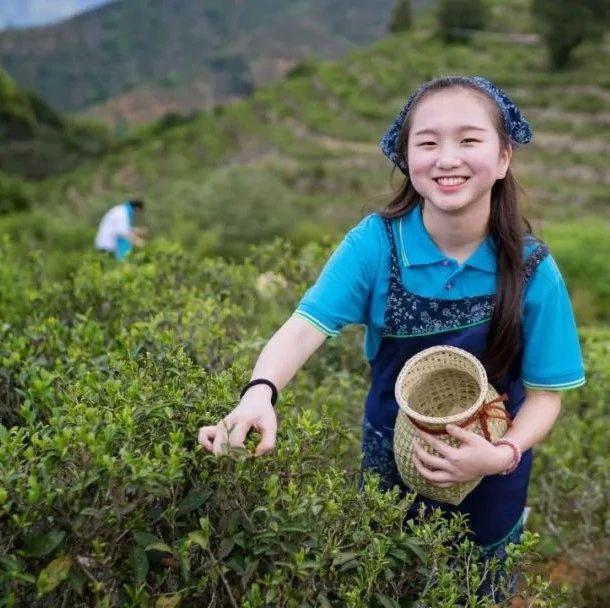 这周末梅州丰顺的山茶合作社、企业要搞大动作,爱好摄影的人不能错过!