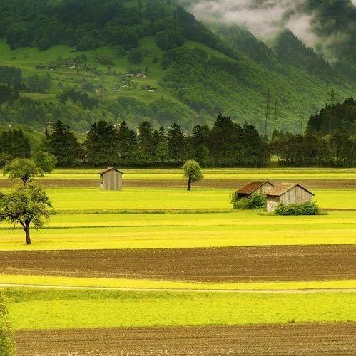 1290万亩!2018年黑龙江耕地轮作休耕补贴方案出来了!