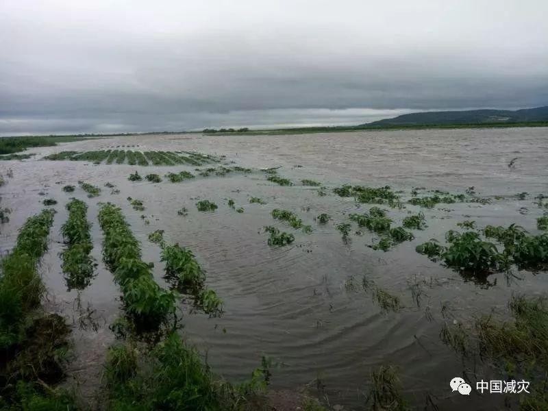 嘉荫县人口_伊春游记(3)