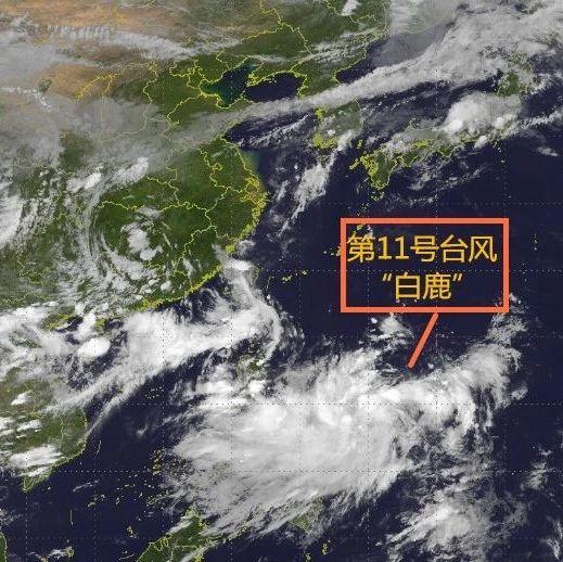 """最高13级!11号台风""""白鹿""""即将正面袭击广东,风力或还加强!"""