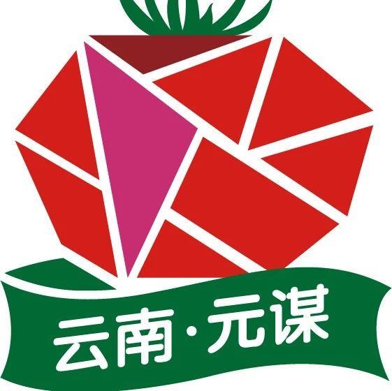 叒要见面了!第三届云南·元谋蔬菜种博会已有超百家企业参加展示