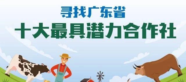 够格你就来!广东省农业农村厅寻找十大最具潜力合作社